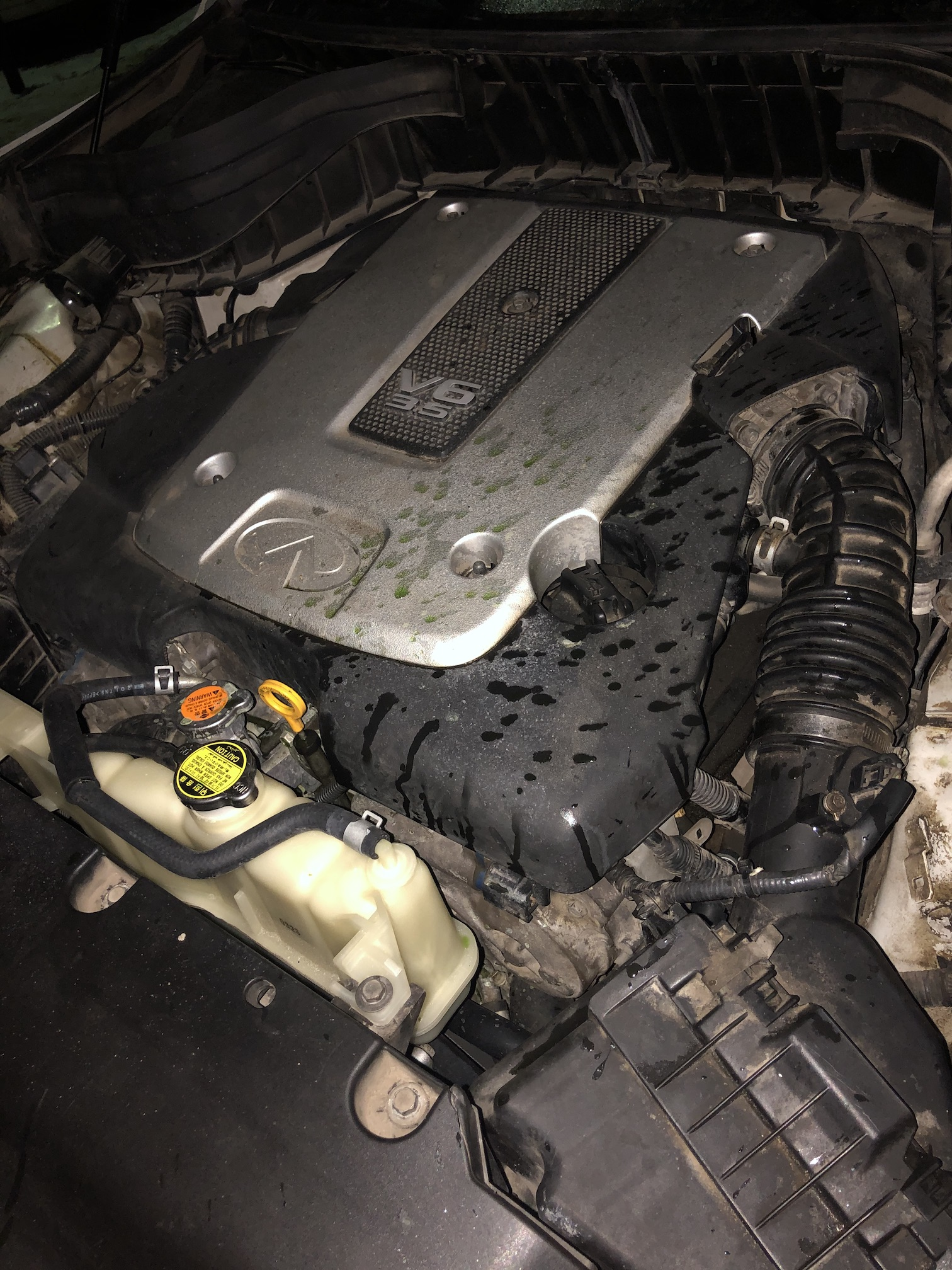 VQ35HR закидало антифризом